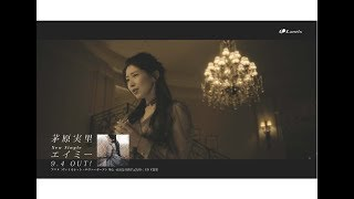 茅原実里「エイミー」 MV Short Size 『ヴァイオレット・エヴァーガーデン 外伝 -永遠と自動手記人形-』ED主題歌