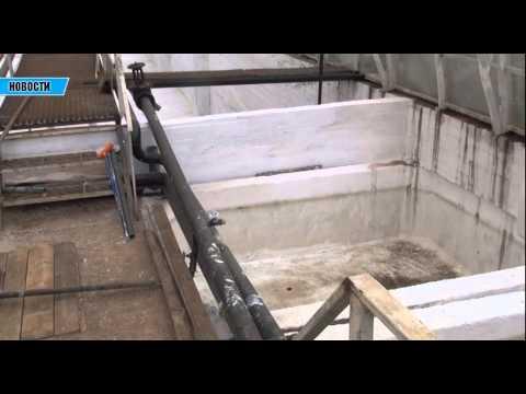 Предприниматель из Куюргазинского района разводит деликатесную рыбу в обычном пруду