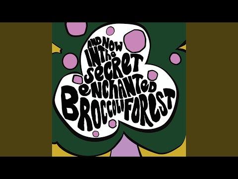 Secret Enchanted Broccoli Forest