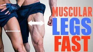 3 Exercises to Get STRONG Muscular Quads FAST
