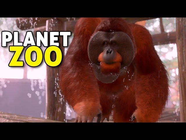 O santuário dos primatas! | Planet Zoo #02 - Carreira Gameplay PT-BR