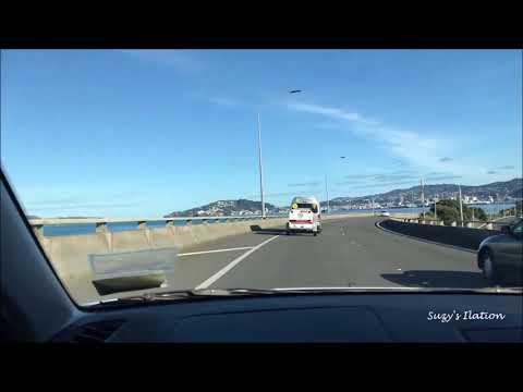 Scenic Drive To Wellington NZ