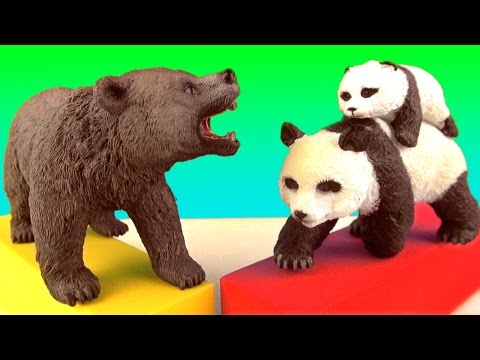 WILD ANIMALS Grizzly POLAR BEAR Sun Bear PANDA Educational Toys - Learn about Zoo animals in English