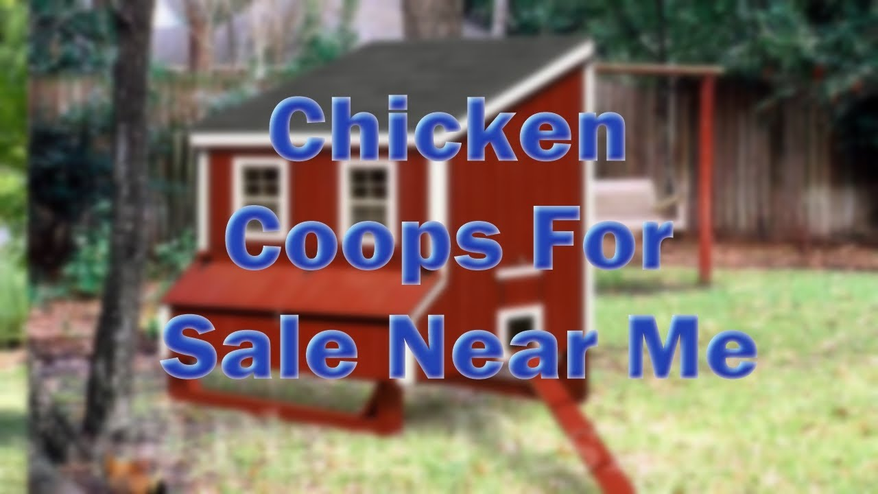 chicken coops for sale near me youtube