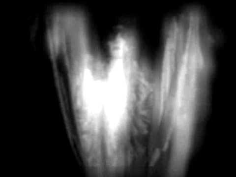 Клип Gazelle Twin - I Am Shell I Am Bone