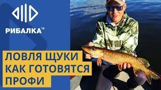 Ловля щуки. Секреты от рыбака спортсмена. Лучшие приманки для ловли щуки