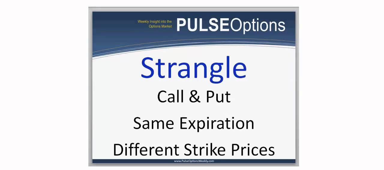 Home - Trader Pulse