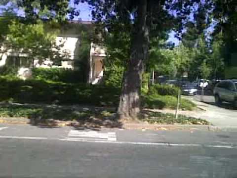 The streets around Palo Alto, CA