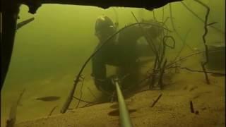 Подводная охота(видео охота) сомы гиганты