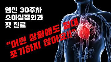 [임신30주차]선천성심장병-심장외과 첫 진료-총동맥간/심실중격결손/폐동맥궁 (feat. 어떤 상황에서도 포기하지 않아요...우리는...)