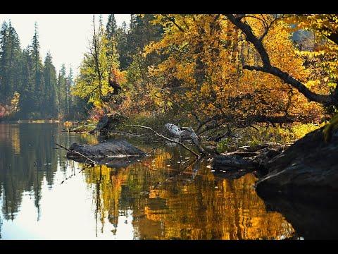 Fly Fishing Montana 2020 - Rainbow Trout