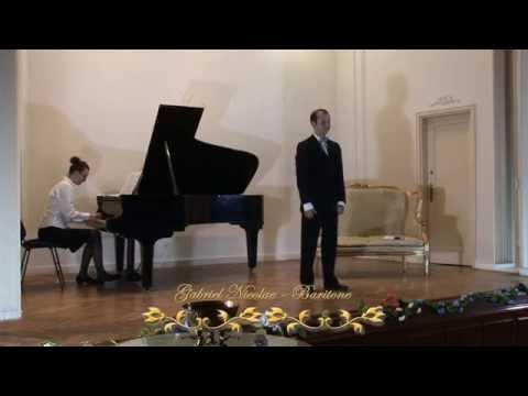 Gabriel Nicolae - La calunnia - Il Barbiere di Seviglia - G. Rossini
