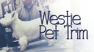 Westie Pet Trim by Jonathan David