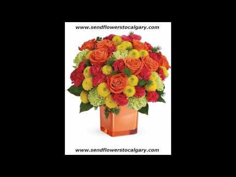 canada national flower wiki