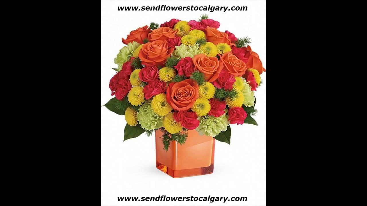 canada national flower wiki youtube