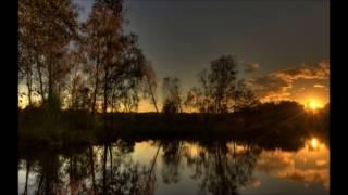 Звуки природы. Nature Sound - Ночной Лес. Костер. Сверчки. Лягушки. Стрекотание. Для сна и релакса.