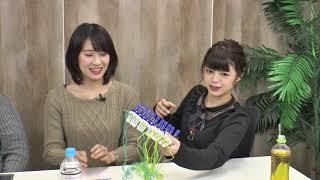 【17/12/28】わグルま!!公式生放送『小侵蝕』