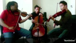 Infinitus - The Flight of the Bumblebee (Remix) - Beatboxing String Trio