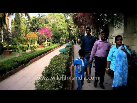 Visitors at Saheliyon ki bari, Gulab Bagh - Udaipur