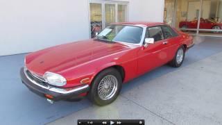 1989 Jaguar XJS V12 Start Up, Exhaust, and In Depth Tour thumbnail