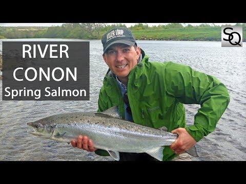 Salmon Fishing in Scotland - Brahan, River Conon Springer