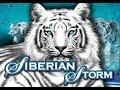 Slot Chronicle - AMAZING COMEBACK - Siberian Storm - MAX BET