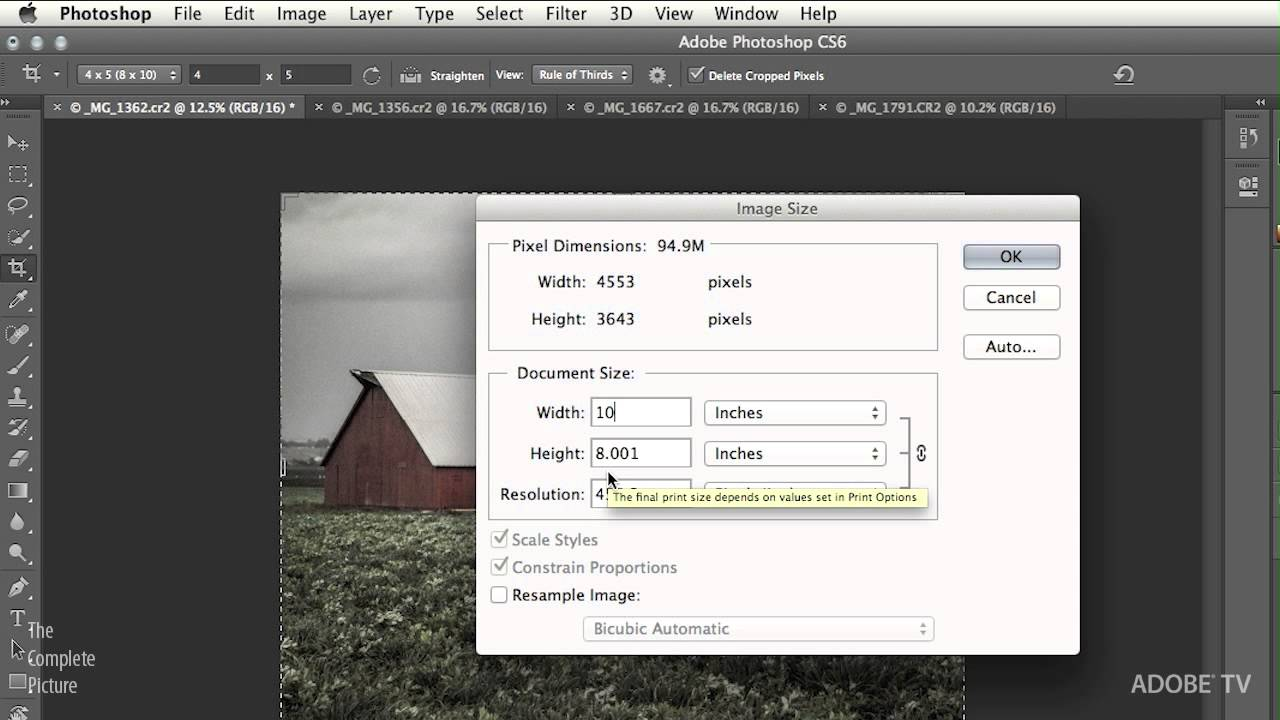 Cropping to an exact size in Photoshop, ultimate
