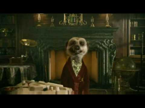 Compare The Meerkat Advert NEW (Compare The Market), Cheap Car Insurance