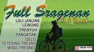 Download Lagu full sragenan tombo ngantuk versi gedruk LALI JANJINE .LEWUNG .TRENYUH .PANGATAK mp3