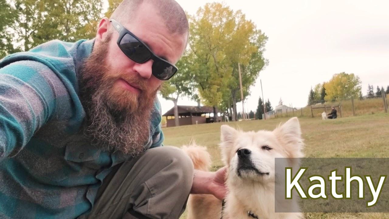 Rich The Vegan: Rescue Dogs Arrive in Canada