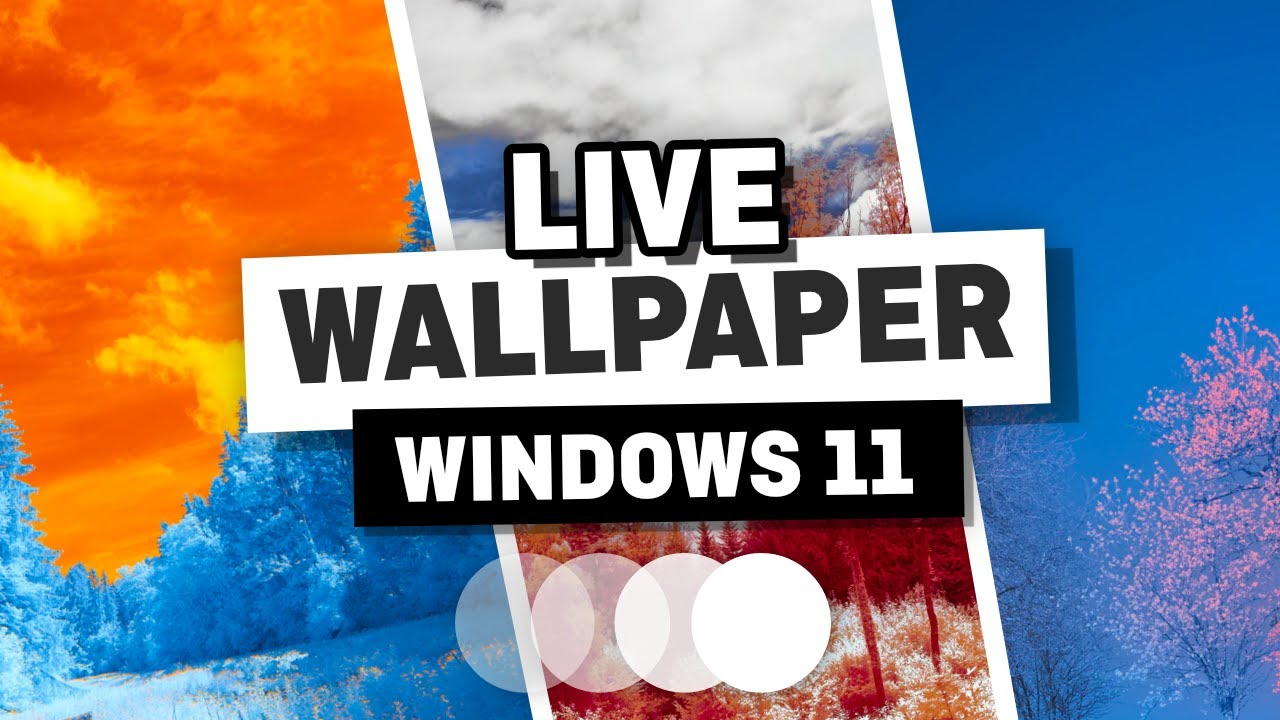 Download How to Add a Live Wallpaper in Windows 11 - Animated Wallpaper for Windows 11