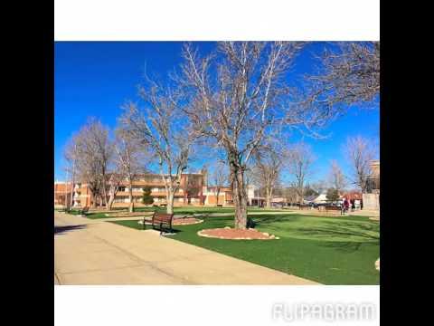 NMHU Campus