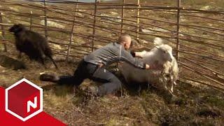 Repeat youtube video Den siste viking - Drakeleirens første utfordring