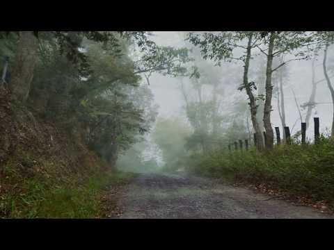 Missing 411: Die Anfänge Teil 2