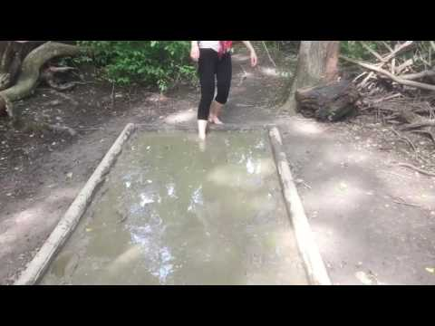 maison de la nature muttersholtz marcher dans la boue into the mud