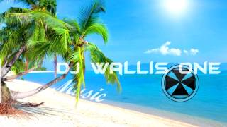 DJ Wallis One - Do You Believe in L.O.V.E (2k15 Tropical House Mash Up)