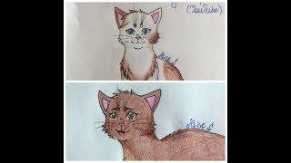 Мои рисунки. Коты-воители (заказы с YouTube)