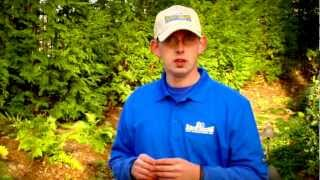 How do I Stop weeds from growing in my Flower Bed and Islands? Unlimited Landscaping Video Blog