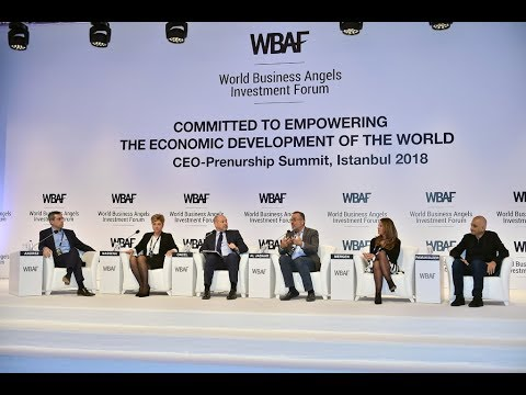 WBAF 2018 Panel: What should CEOs expect in their first angel investment?