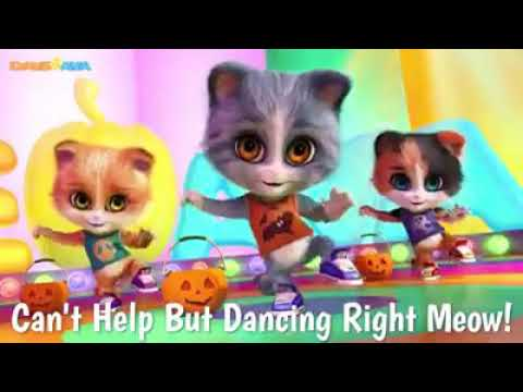 Cat,s dancing Song,s by Dave and Ava