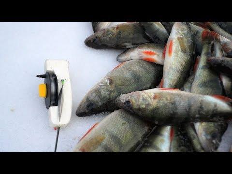 Клип Спорт - Рыбалка