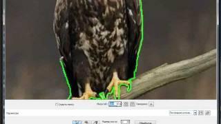Уроки PaintShop: извлечение объектов