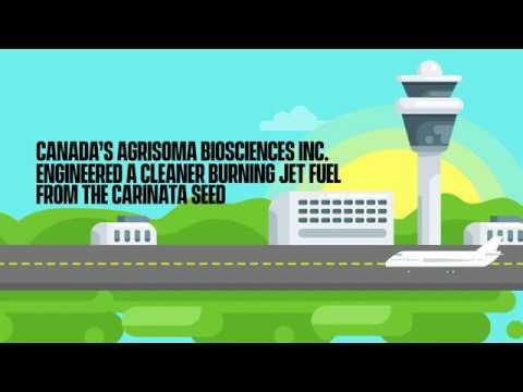 Biofuel powered flights: The newest cleantech innovation in aerospace - #PoweredbyCanada
