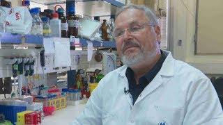 גילוי ישראלי: תרופה שהורגת תאים סרטניים | מתוך חדשות הערב 17.10.17