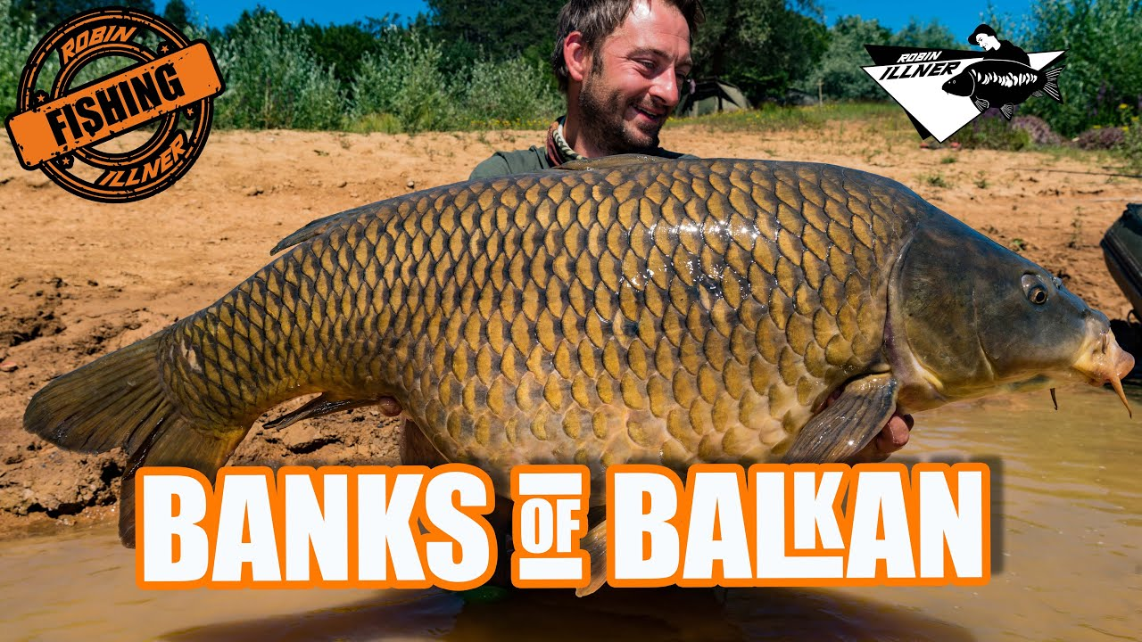 BANKS OF BALKAN - KARPFENANGELN IN KROATIEN! (Summervibes mit Robin Illner und Jörg Krause! LETS GO)