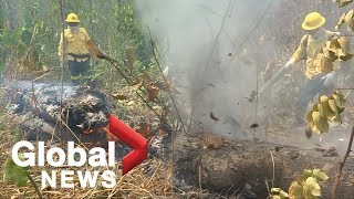 Firefighters tackle fires continuing to burn in devastated Amazon rainforest