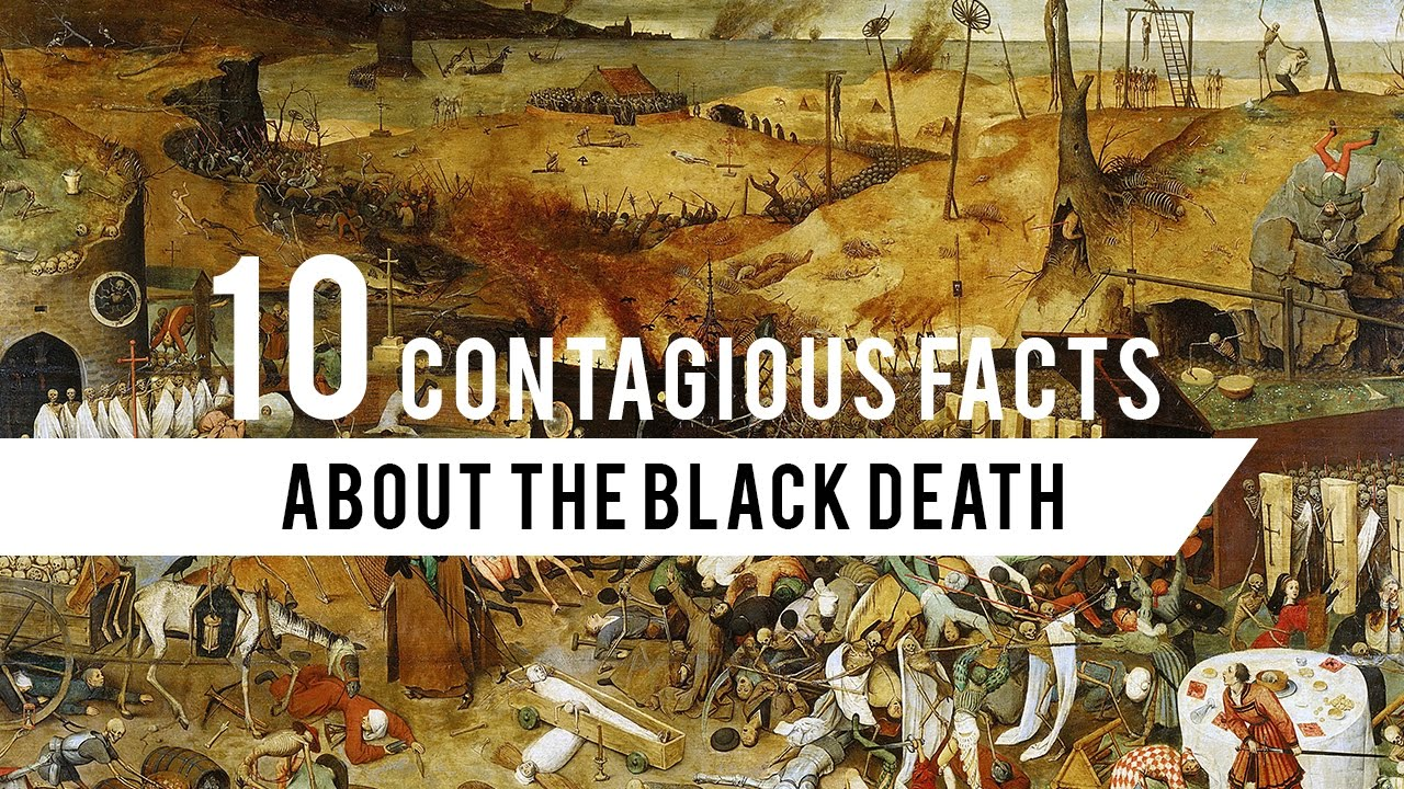 catastrophic facts about the black death com