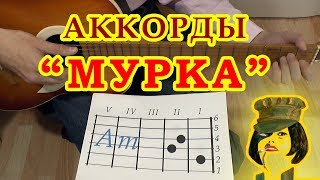 Download МУРКА | Аккорды | Гитарный бой | Разбор на гитаре видео урок Mp3 and Videos