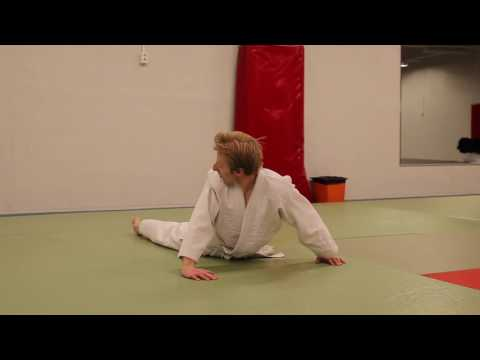 Aikido / Mielen & kehon harmoninen tie         (subtitled in english)