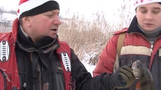Рыбалка по-лугански Твистер.